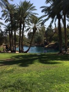 Sachne Springs